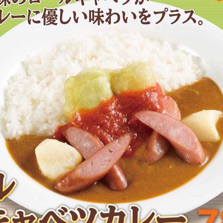 【期間限定メニュー】ロールキャベツカレー